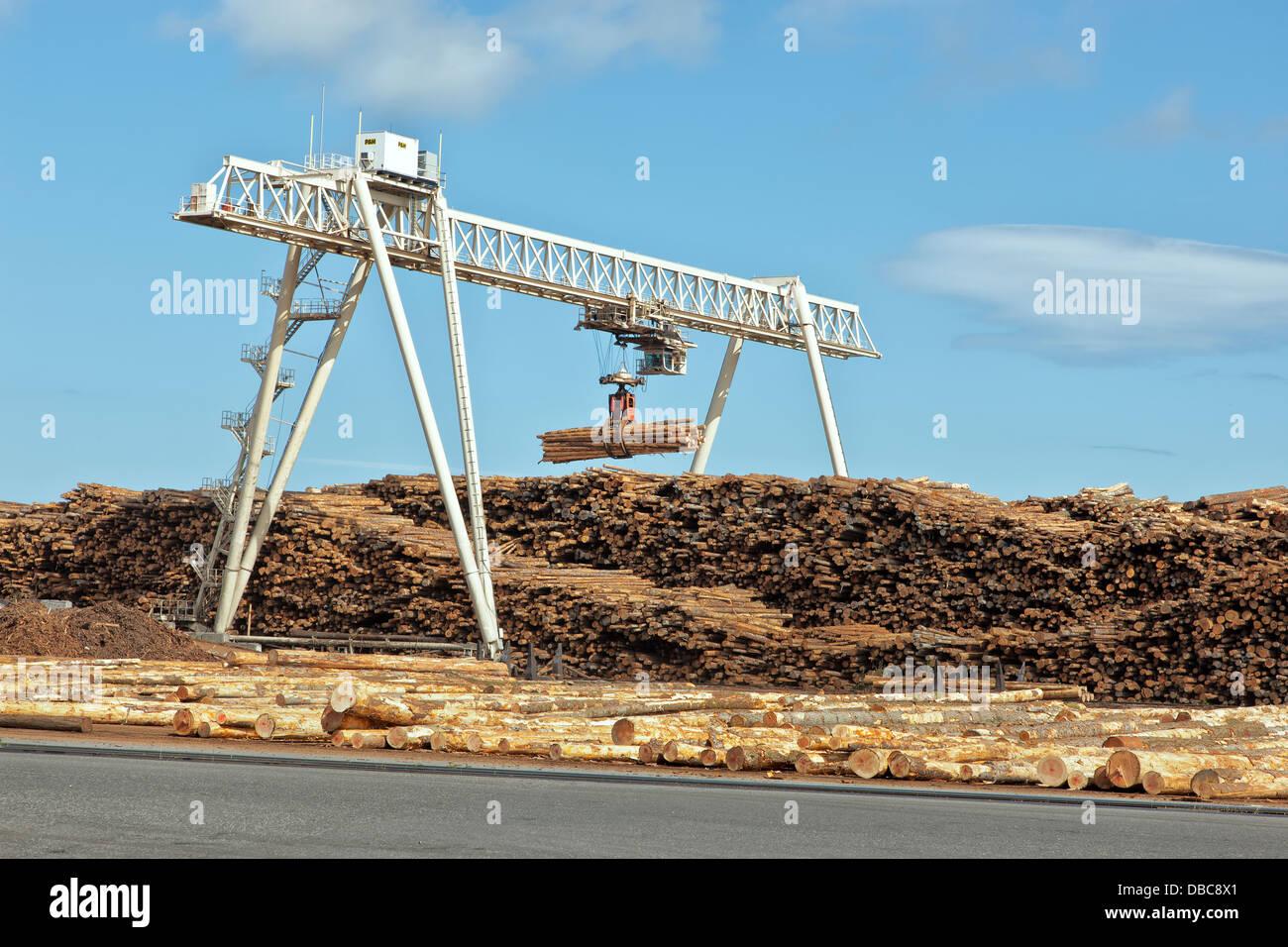 P & H crane stockpiling logs, lumber mill. - Stock Image