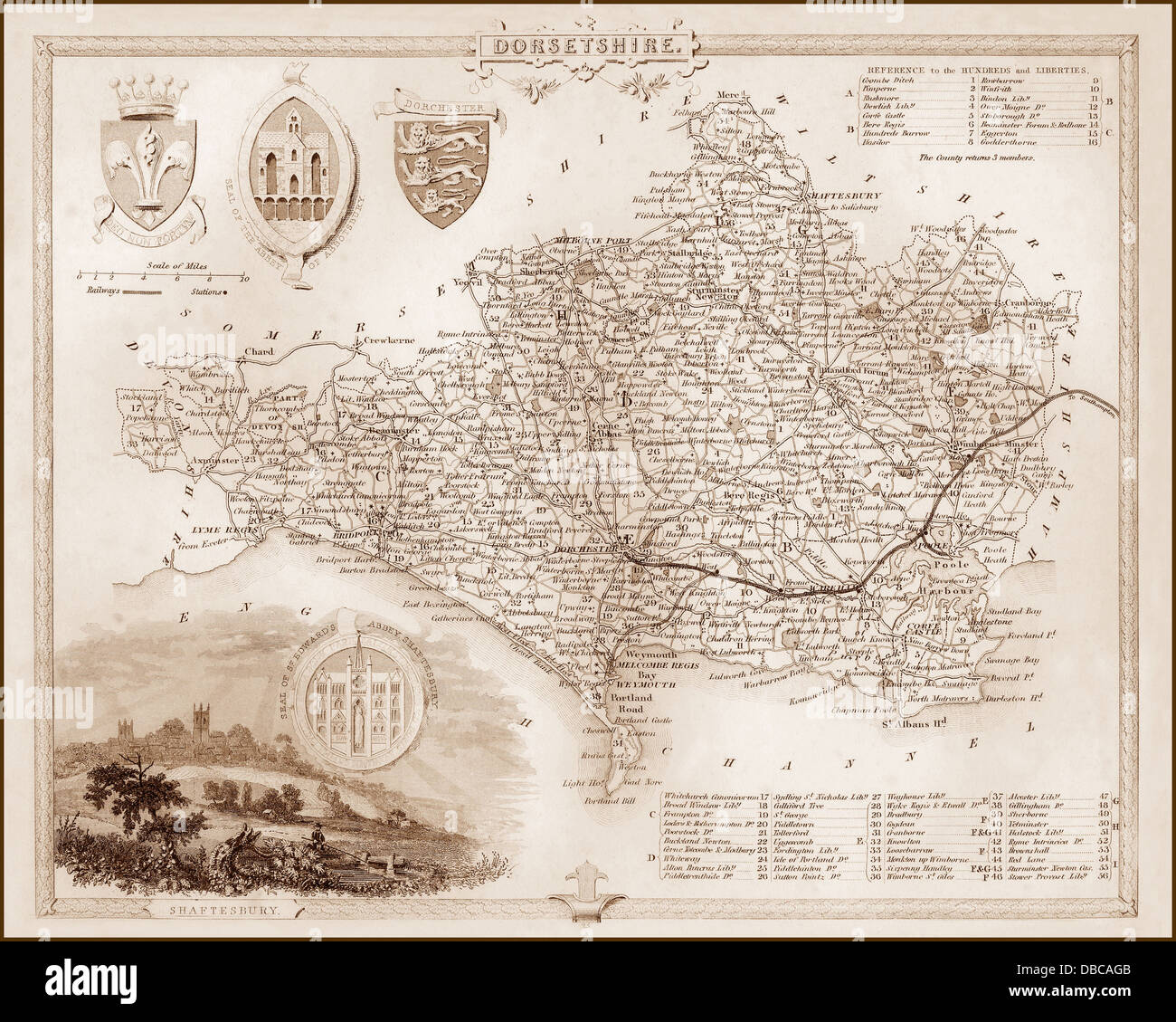 Antique County Map Of Dorsetshire By John Cary 1787 Old Plan Chart And Digestion Helping Europe Maps