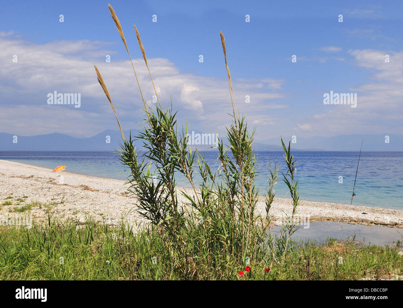 Beach scene near AKRATA BEACH on the northern  coast  on the Peloponnese Greece - Stock Image