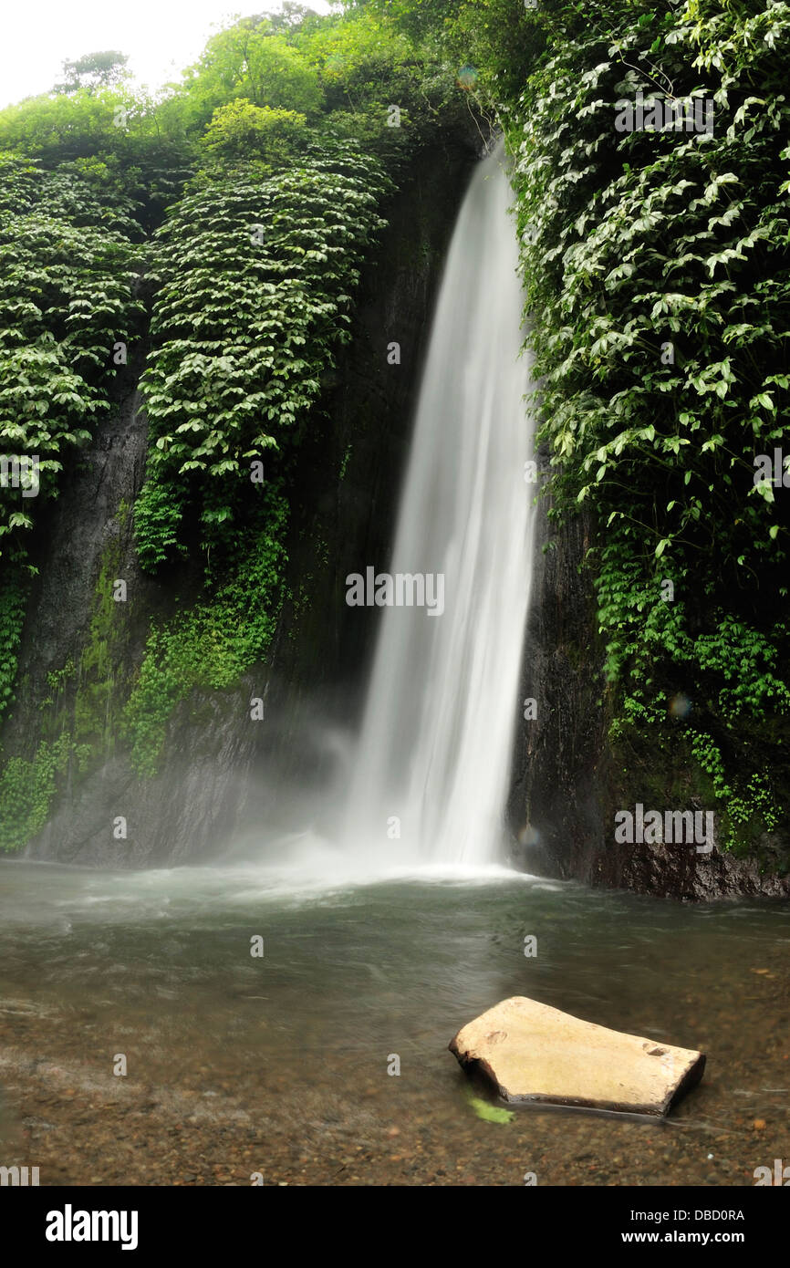 Munduk waterfall, Bali, Indonesia, Asia - Stock Image