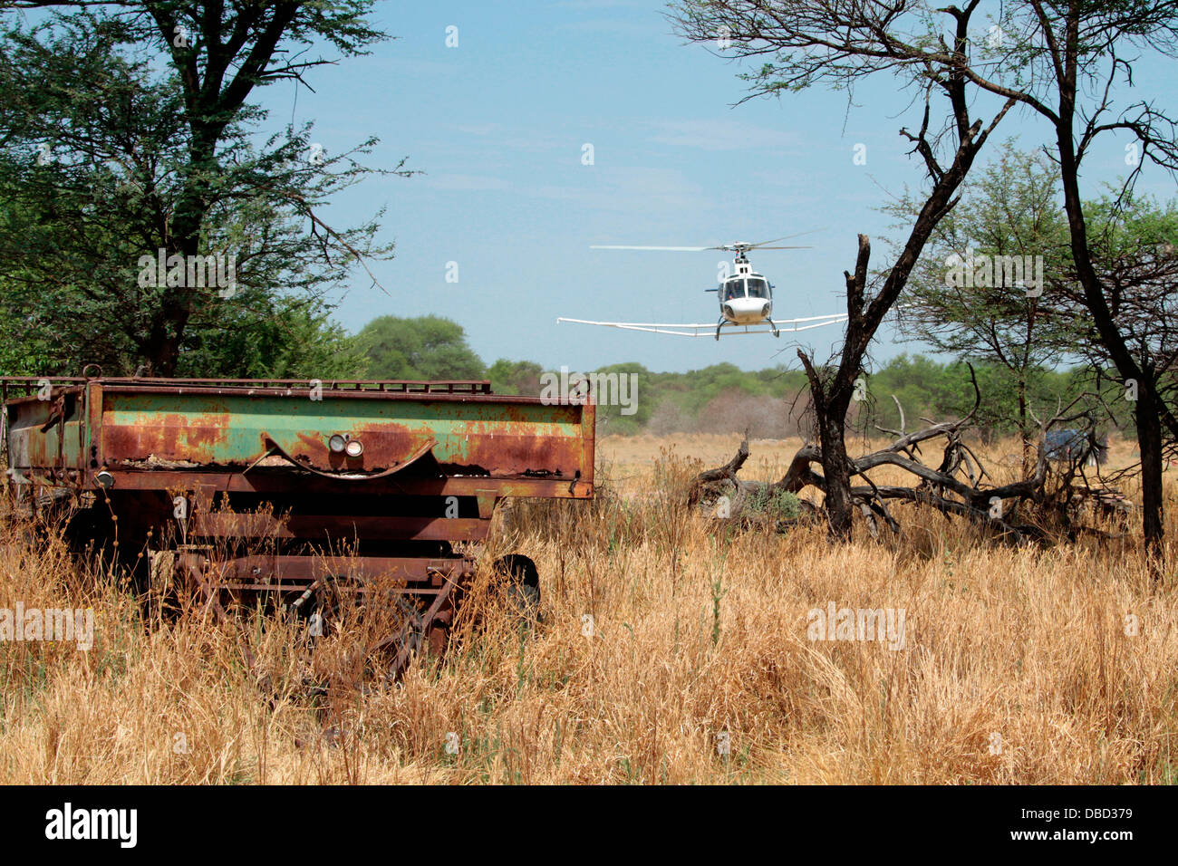 The Eurocopter AS350 Ecureuil; squirrel flies a line for a geophys mineral survey near Otjiwarongo in Namibia - Stock Image