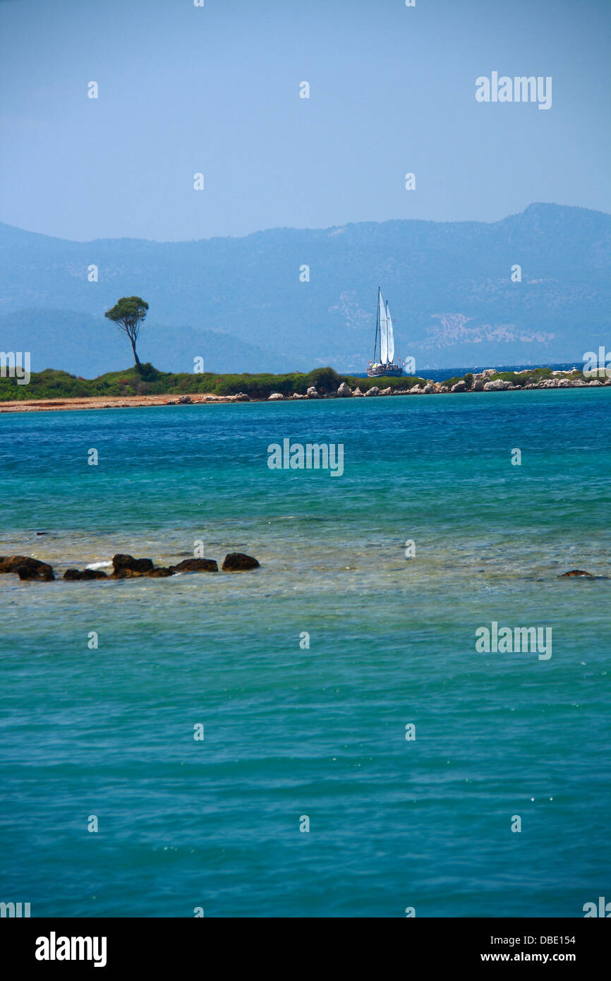 lonely tree on island with view of tourquoise sea and mountain - Stock Image