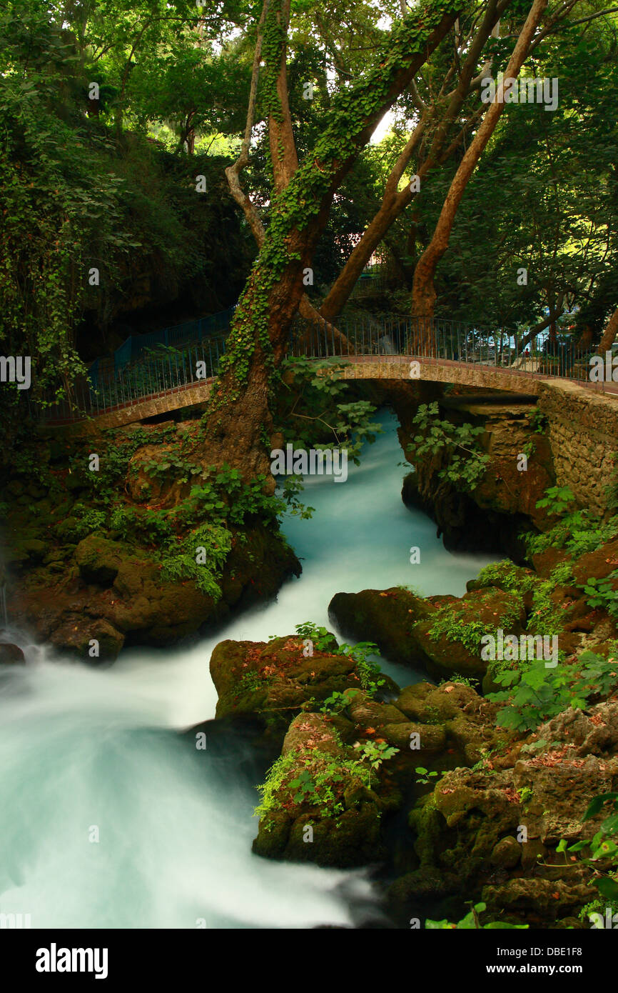 bridge on waterfall with tree and tourquoise stream - Stock Image