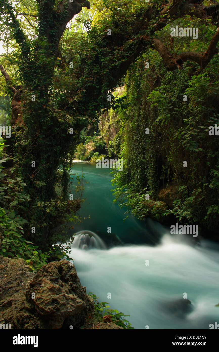tourquoise stream landscape in forest - Stock Image