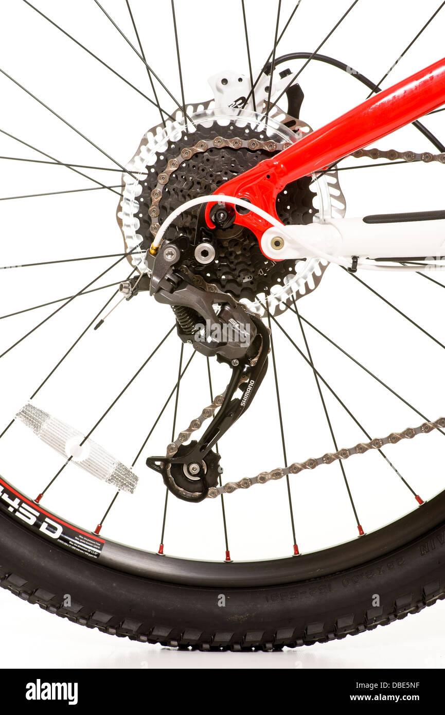 Rear wheel of mountain bike - Stock Image