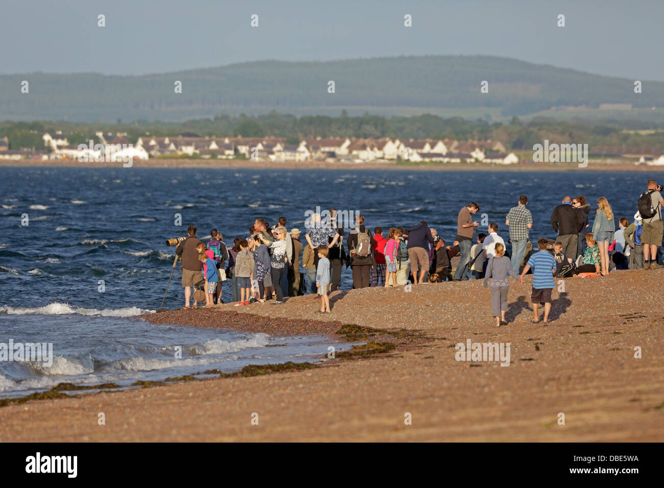 People waiting to see Bottle Nosed Dolphins at Chanonry Point - Stock Image
