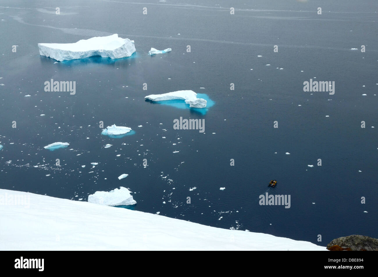 A Zodiac cruises through icebergs at Paradise Harbor in Antarctica - Stock Image