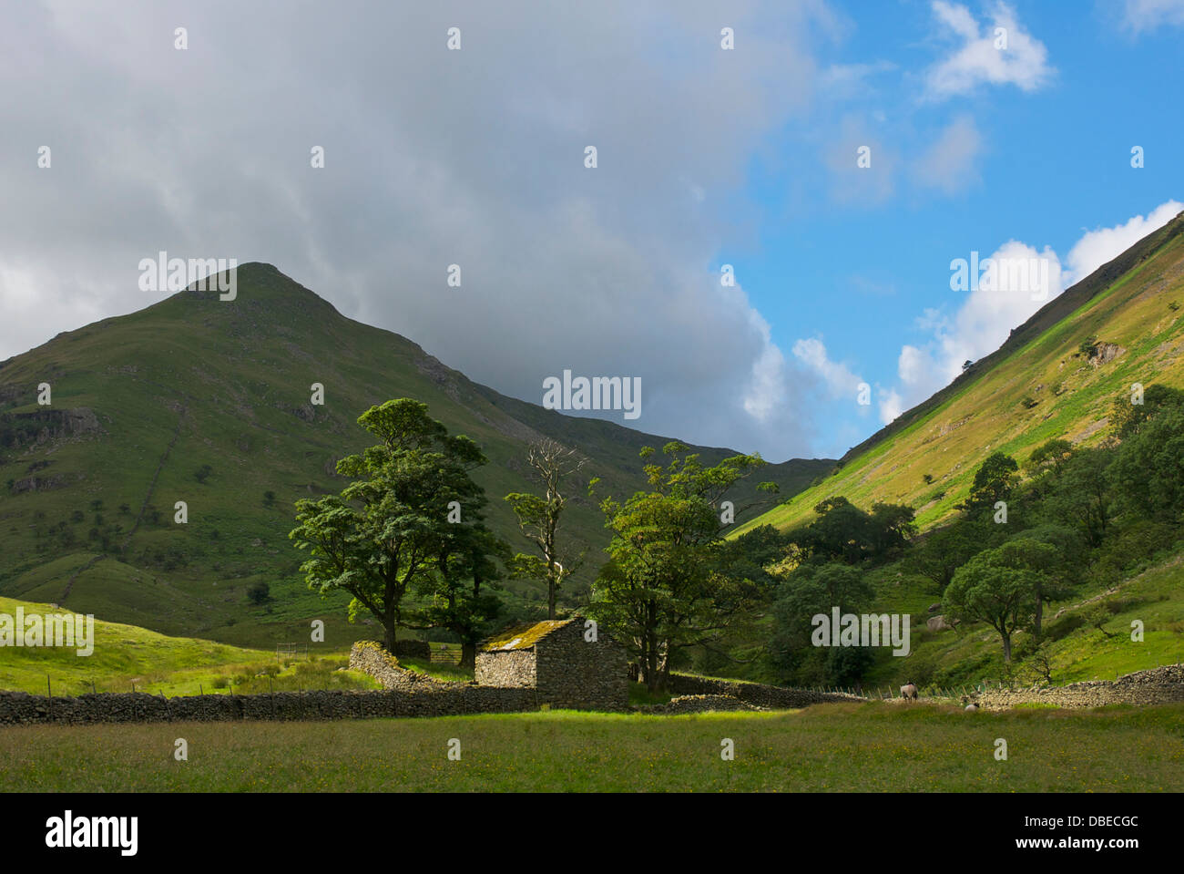 Field barn and hill - Middle Dodd - in Caiston Glen, near Hartsop, Lake District National Park, Cumbria, England - Stock Image