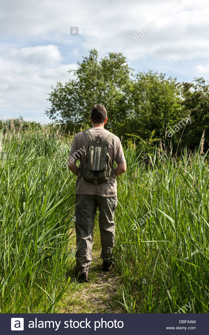 Person walking in long grass - Stock Image