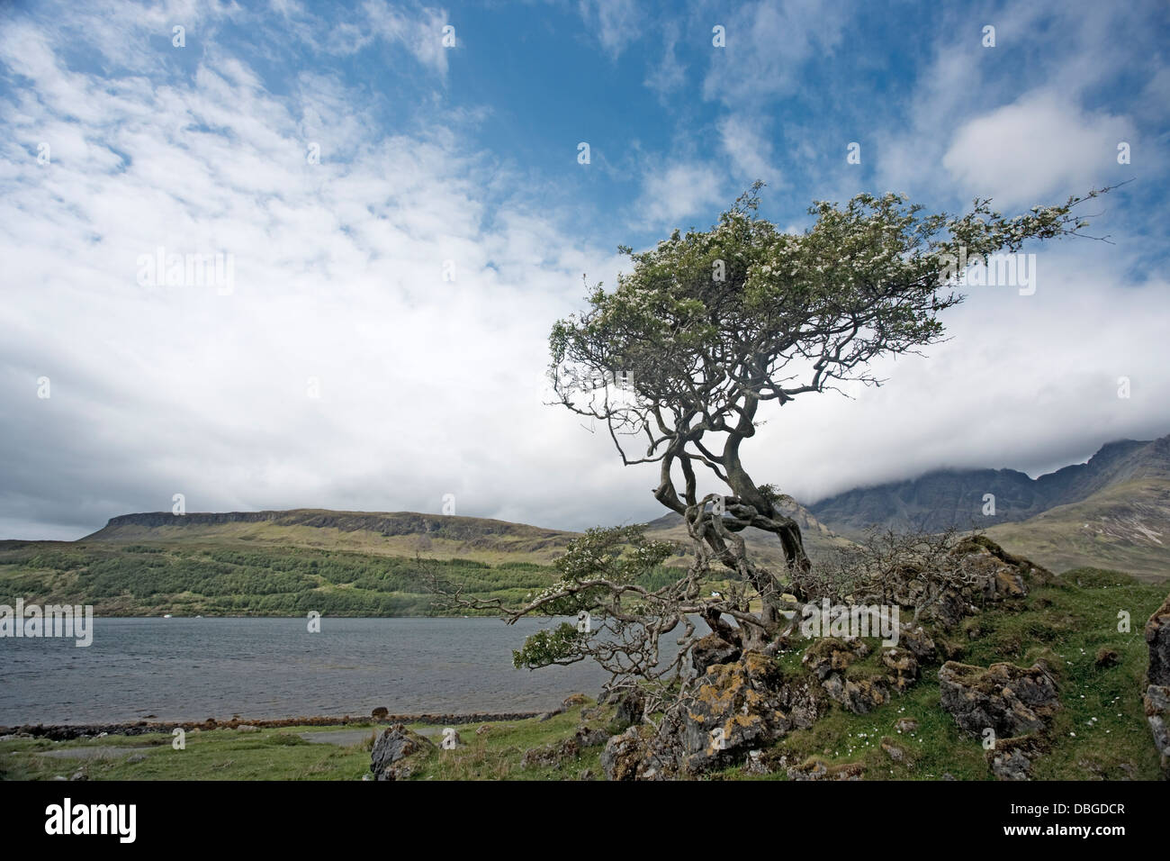 View across Loch Slapin Isle of Skye, Inner Hebrides Scotland, UK LA006259 - Stock Image