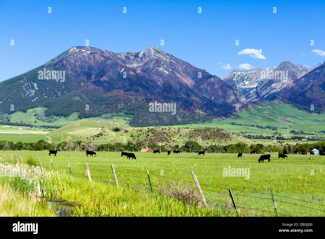Cattle ranch south of Livingstone, Montana, USA - Stock Image