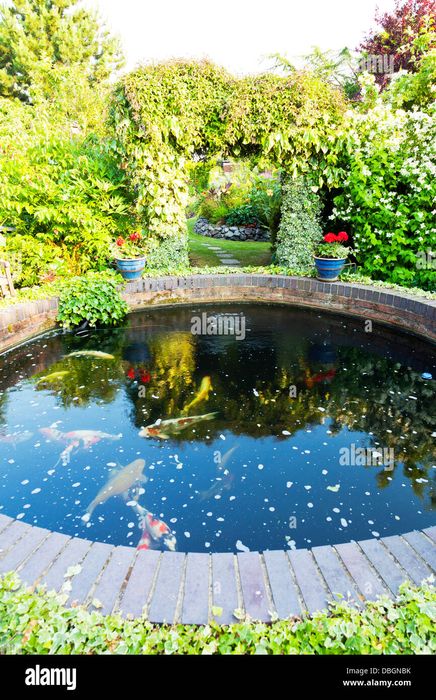 Carp pond stock photos carp pond stock images alamy for Koi carp pond