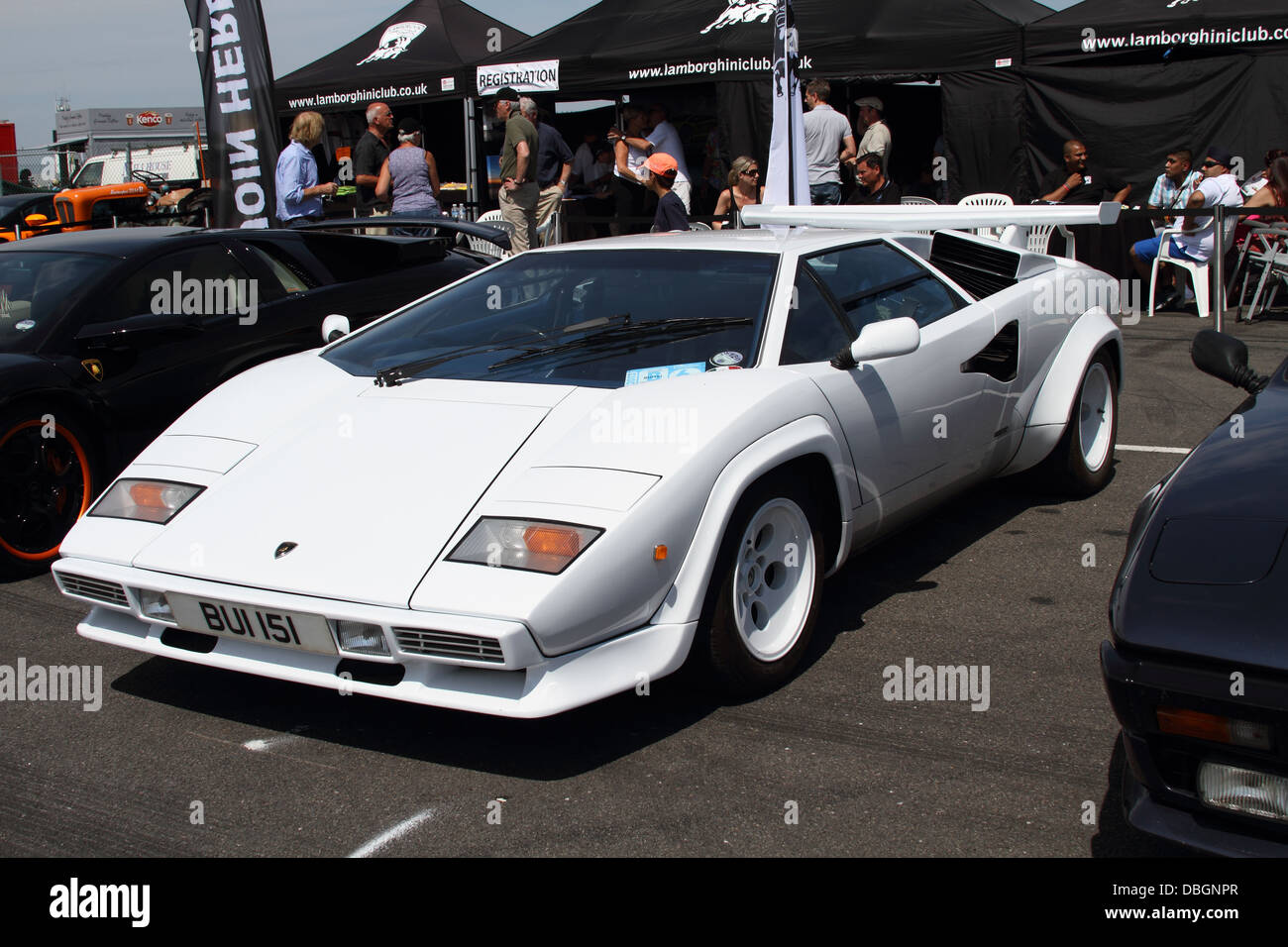 Lamborghini Countach at Silverstone - Stock Image