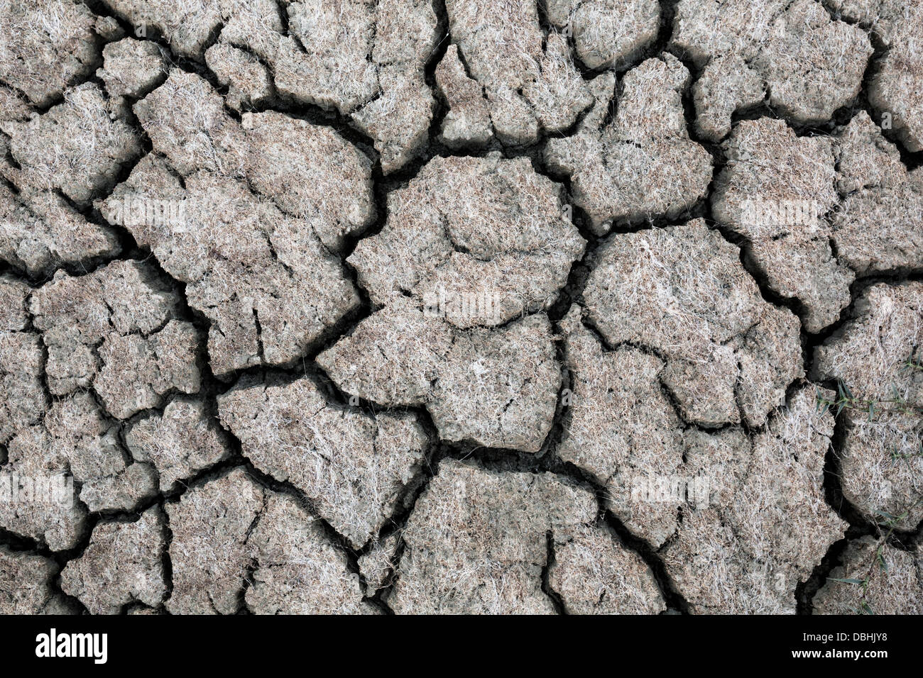 Drought ground of death lake Koronia in northern Greece. - Stock Image