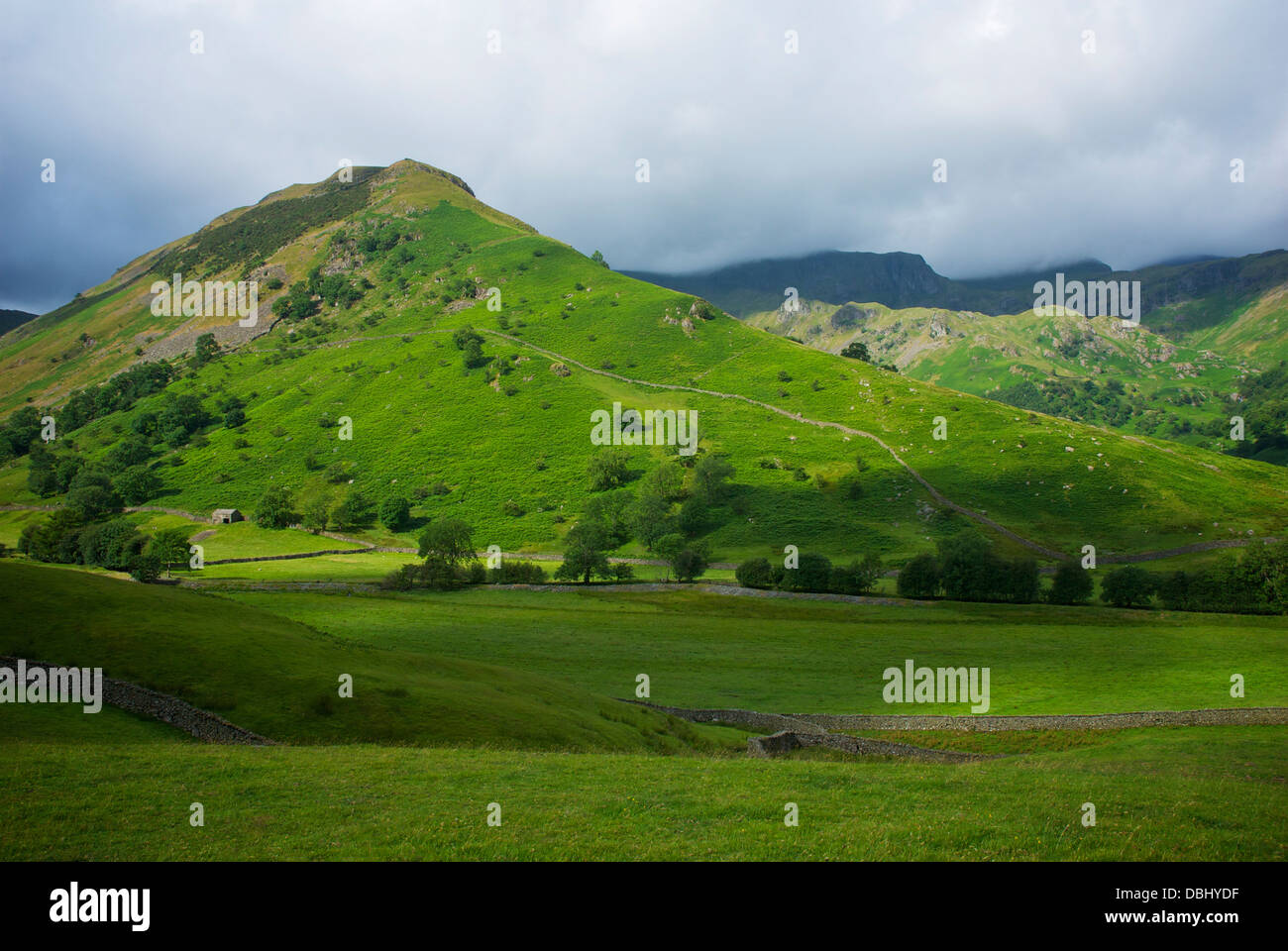 High Hartsop Dodd and the Dovedale Valley, near Hartsop, Lake District National Park, Cumbria, England UK - Stock Image
