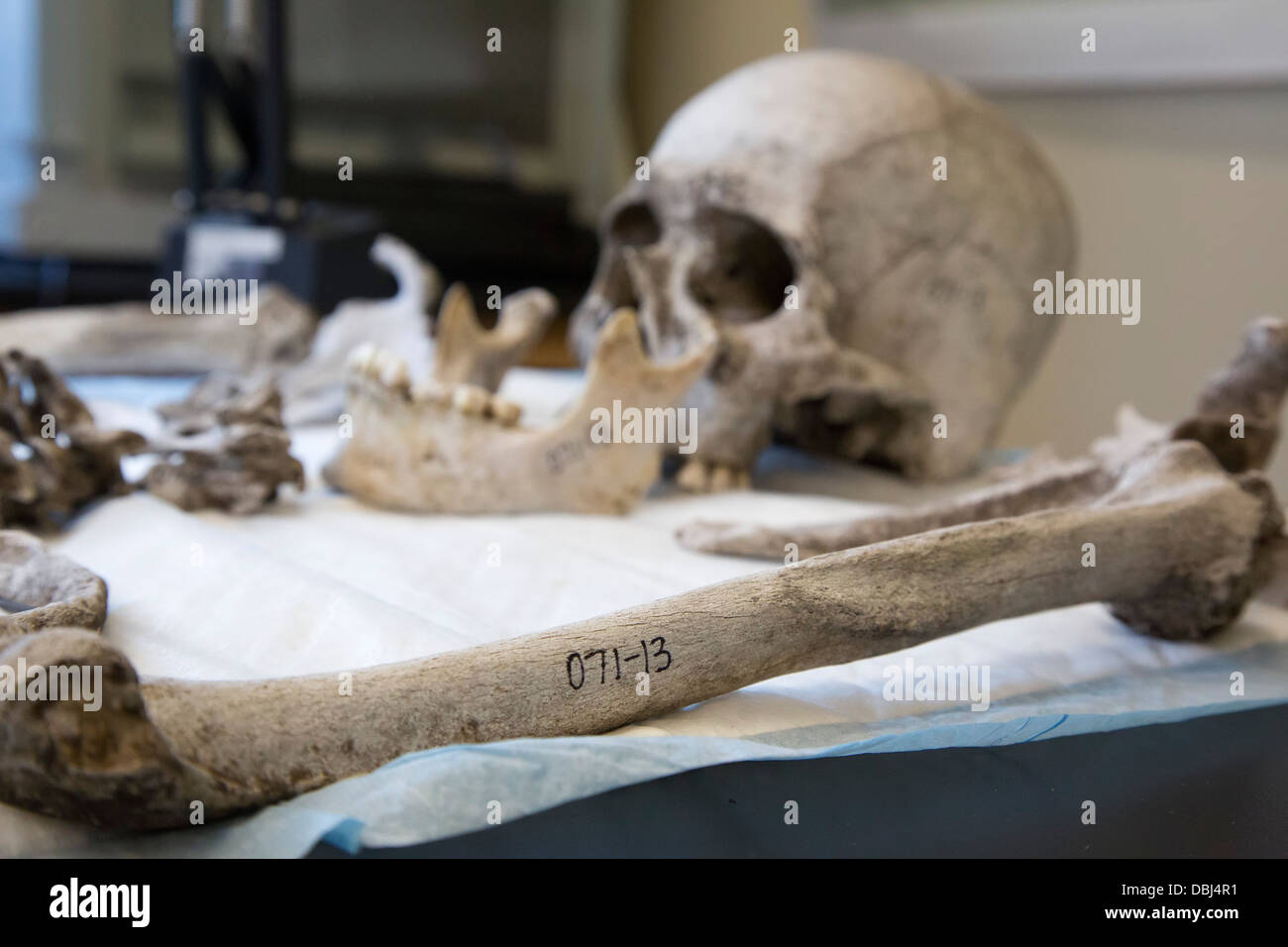 Baylor University Lab Works to Identify Remains of Unknown Migrants who Died Crossing the Border from Mexico - Stock Image