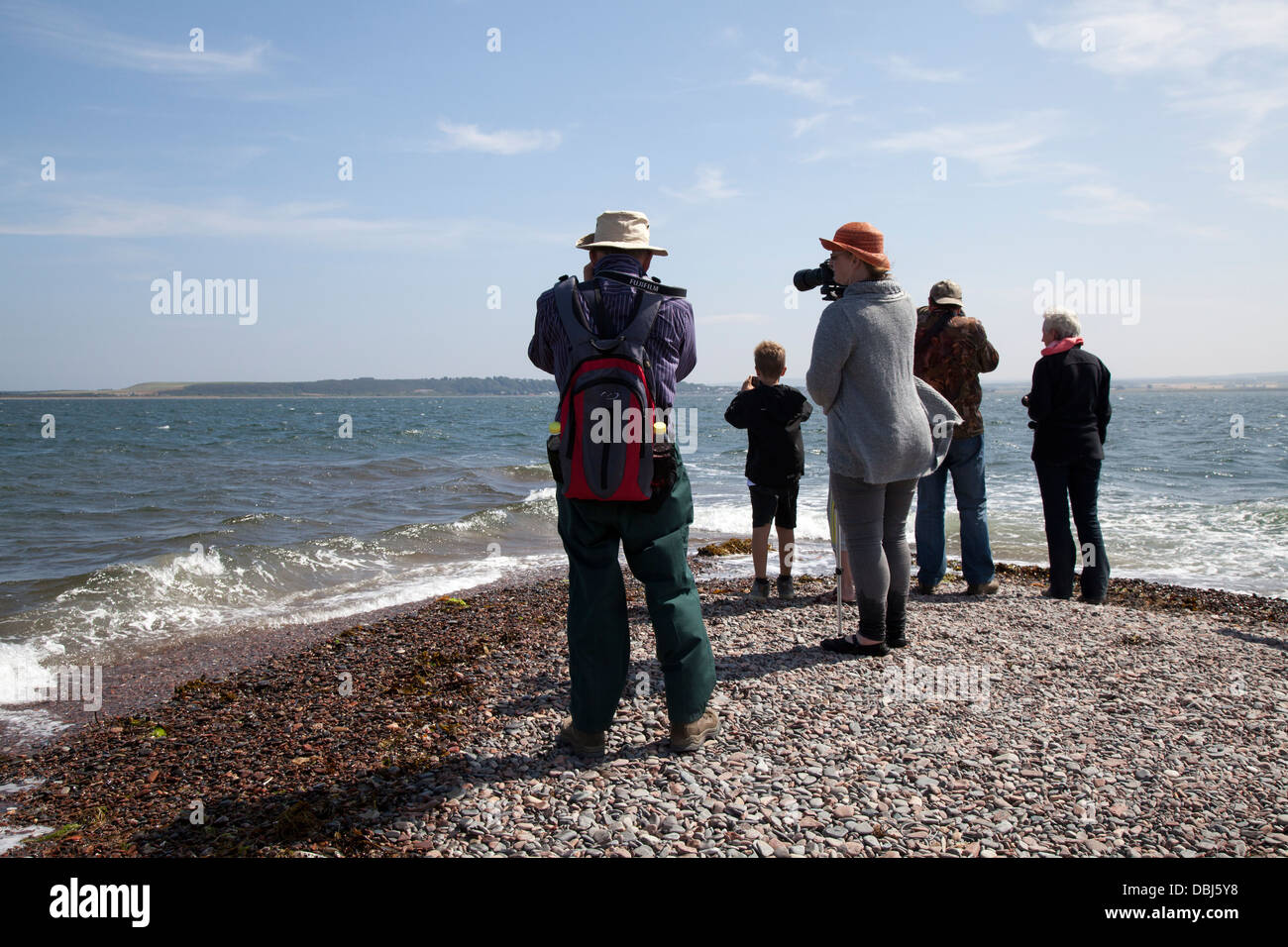 Dolphin watchers looking out to sea at Chanonry Point, Tourists watching the Moray Firth Bottlenose Dolphins, Cromarty, - Stock Image