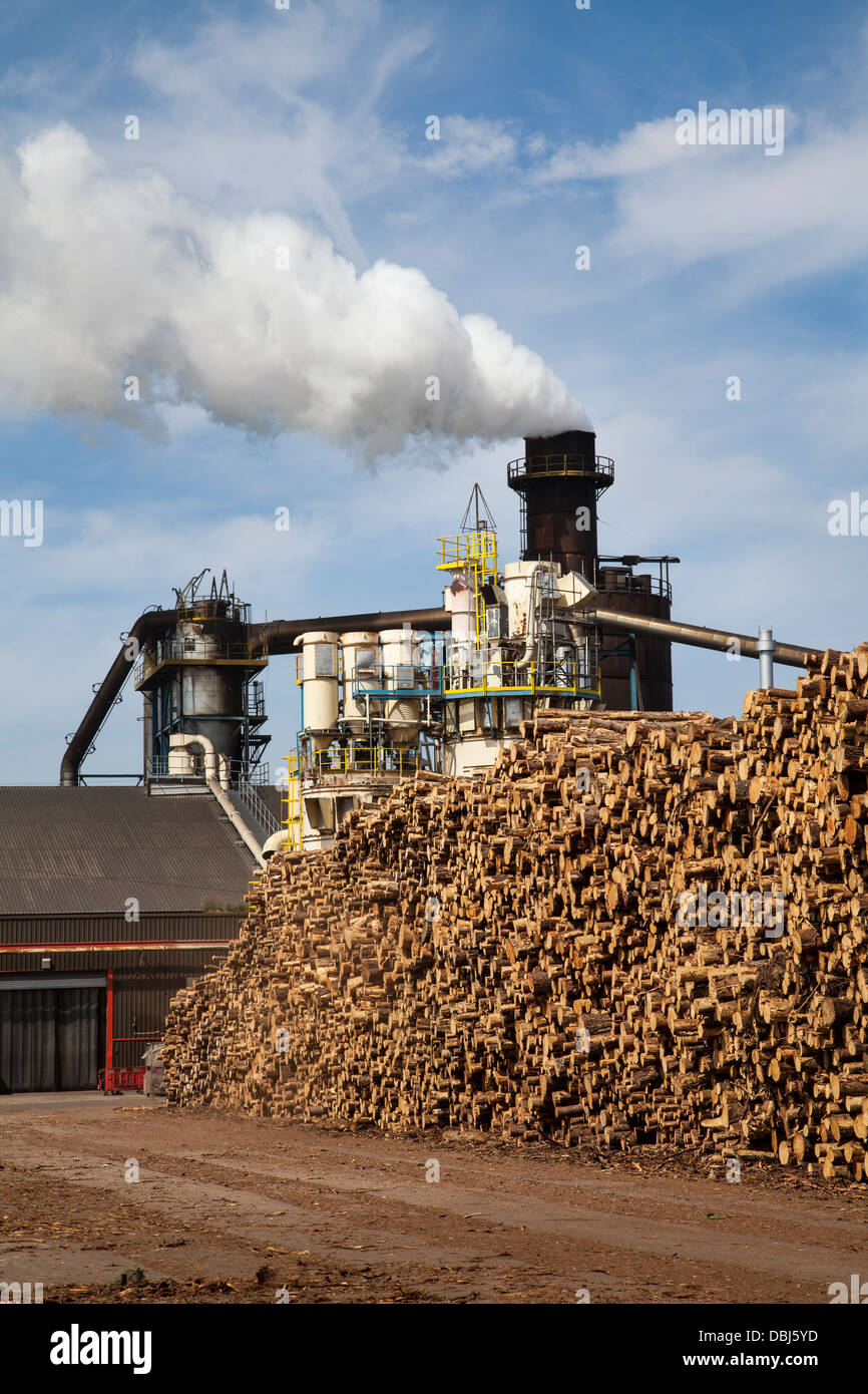 Scottish Tree Logging _Emissions from Bioenergy Norbord processing plant Inverness - Morayhill, Dalcross, Invernessshire, - Stock Image
