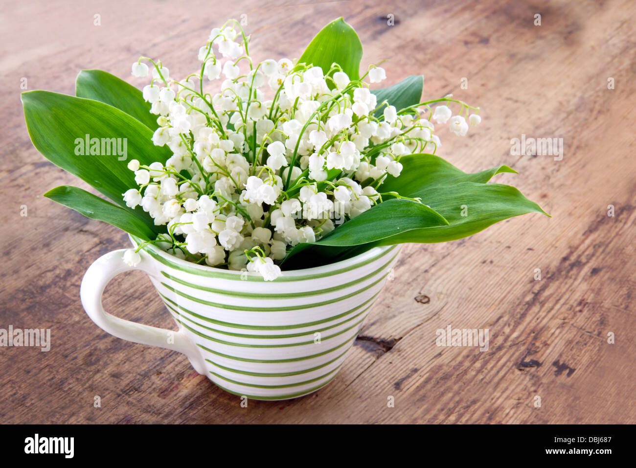 Bouquet Of Lily Of The Valley Spring Flowers In A Green Striped Cup Stock Photo Alamy