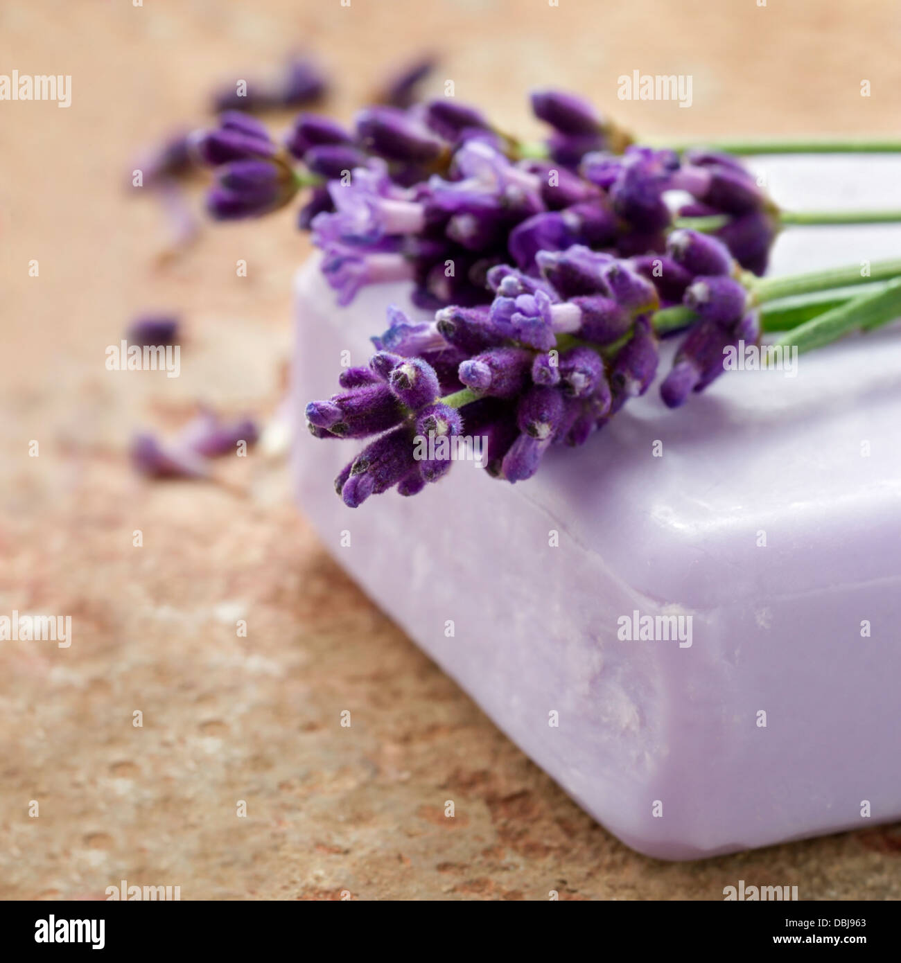 Bar of violet spa soap with fresh lavender flowers on rustic terracotta background - Stock Image