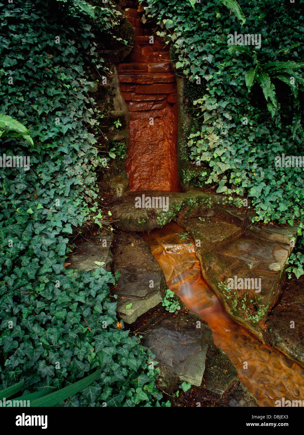 Chalice Well Gardens, Glastonbury, Somerset: a healing chalybeate spring associated with the Earth Goddess and legends - Stock Image