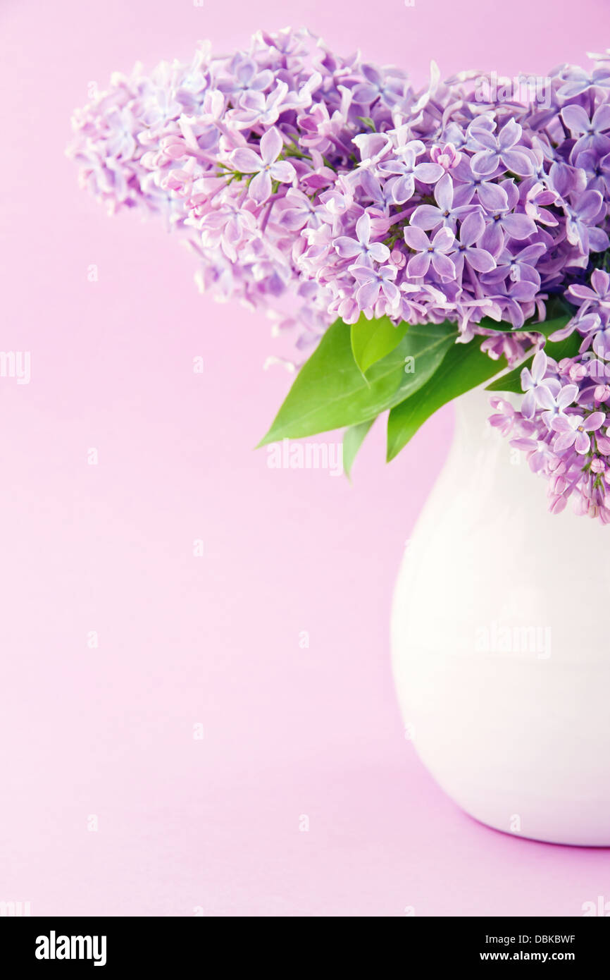 White vase with a bouquet of purple lilac spring flowers - Stock Image