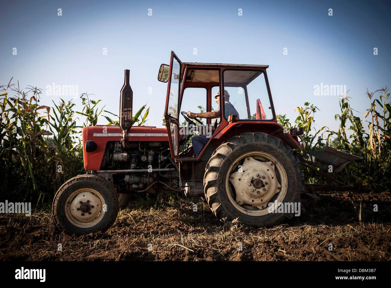Farmer In Tractor Ploughing Field, Croatia, Slavonia, Europe Stock Photo