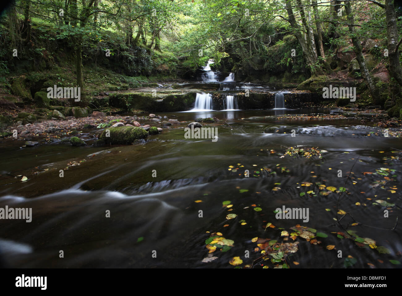 water flowing over rocks. River Erme nr Ivybridge Devon - Stock Image