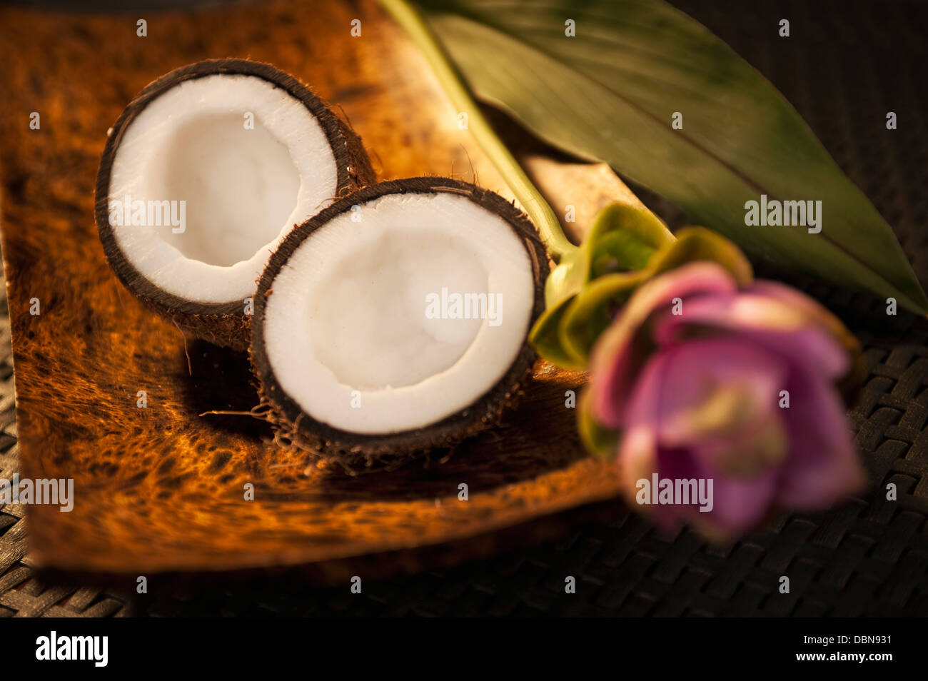 coconut flower stock photos amp coconut flower stock images