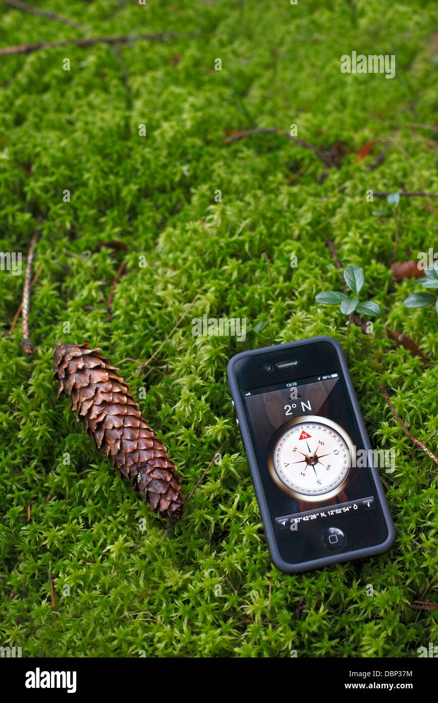 Smart N Final Near Me >> Smart Phone With Compass On Screen Lying On Moss Near Cone Stock