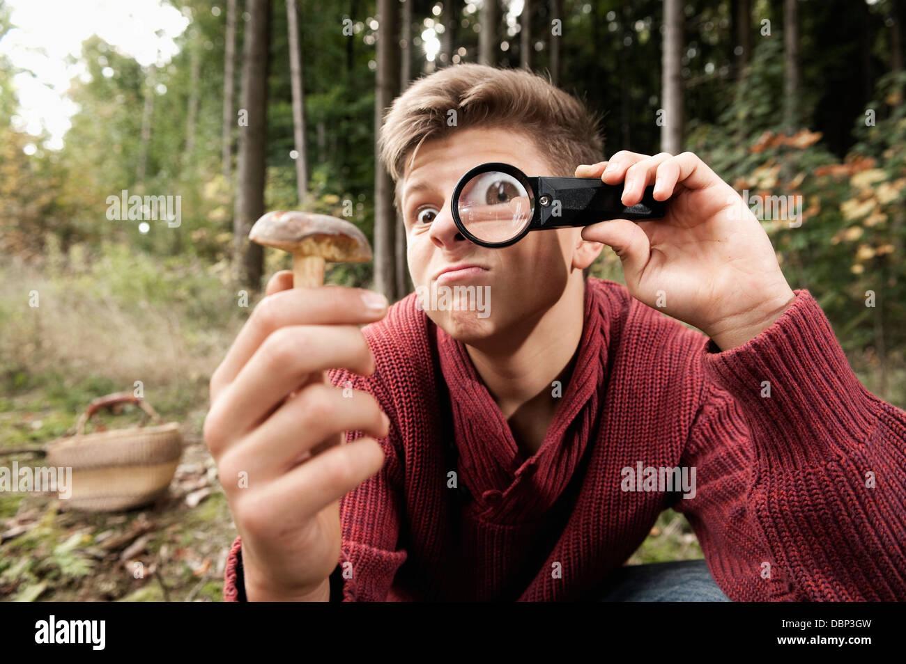 Teenage boy looking at mushroom through magnifying glass, Bavaria, Germany, Europe - Stock Image