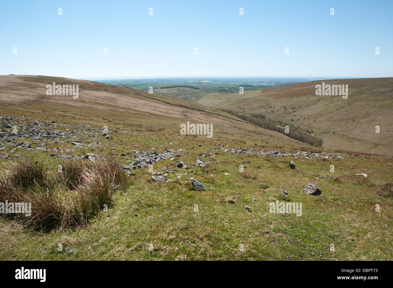 View over River Erme and Piles Copse on Dartmoor - Stock Image