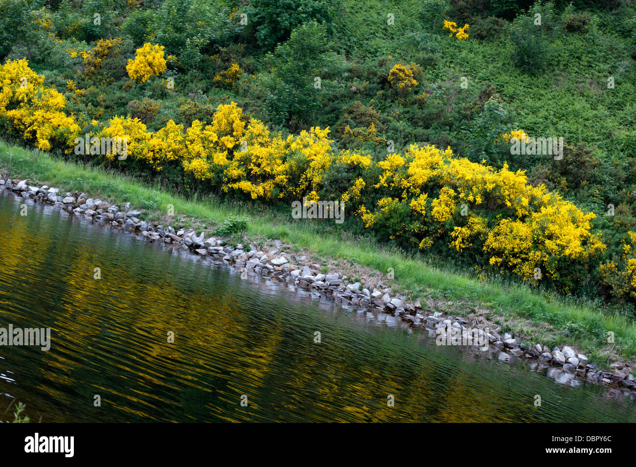 Unusual angle view of the Caledonian Canal near Inverness Scotland - Stock Image