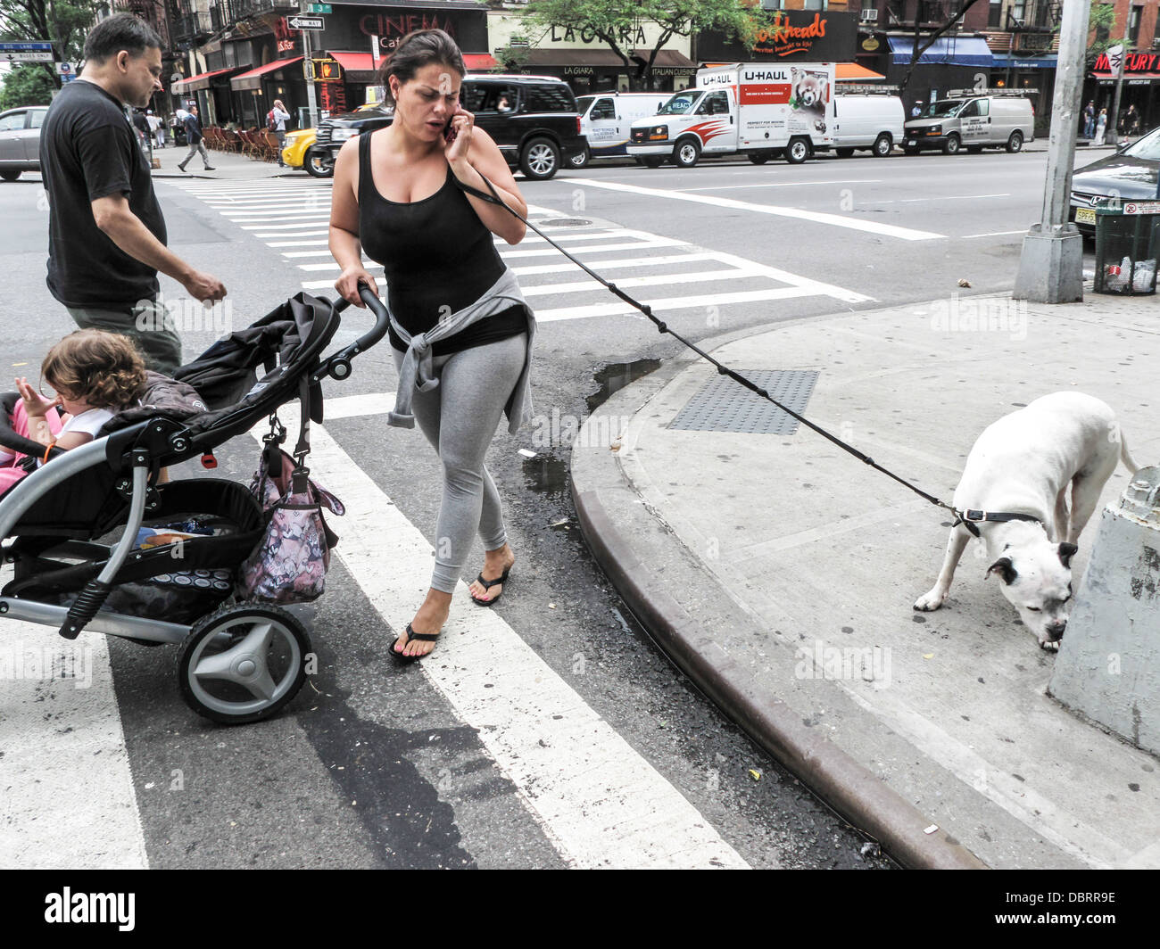 woman on cellphone pushing stroller & walking dog caught between conflicting demands of dog & traffic light 3rd Stock Photo