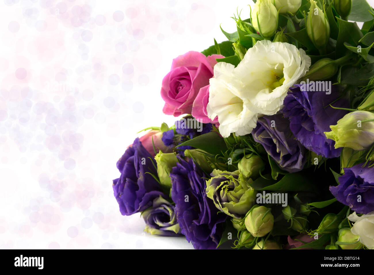 Bouquet of white,blue and pink flowers with diffused background - Stock Image