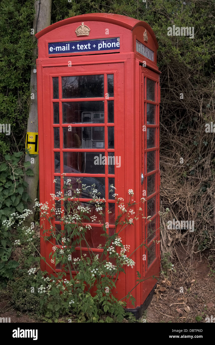 UK red telephone and wild flowers showing lack of use - Stock Image