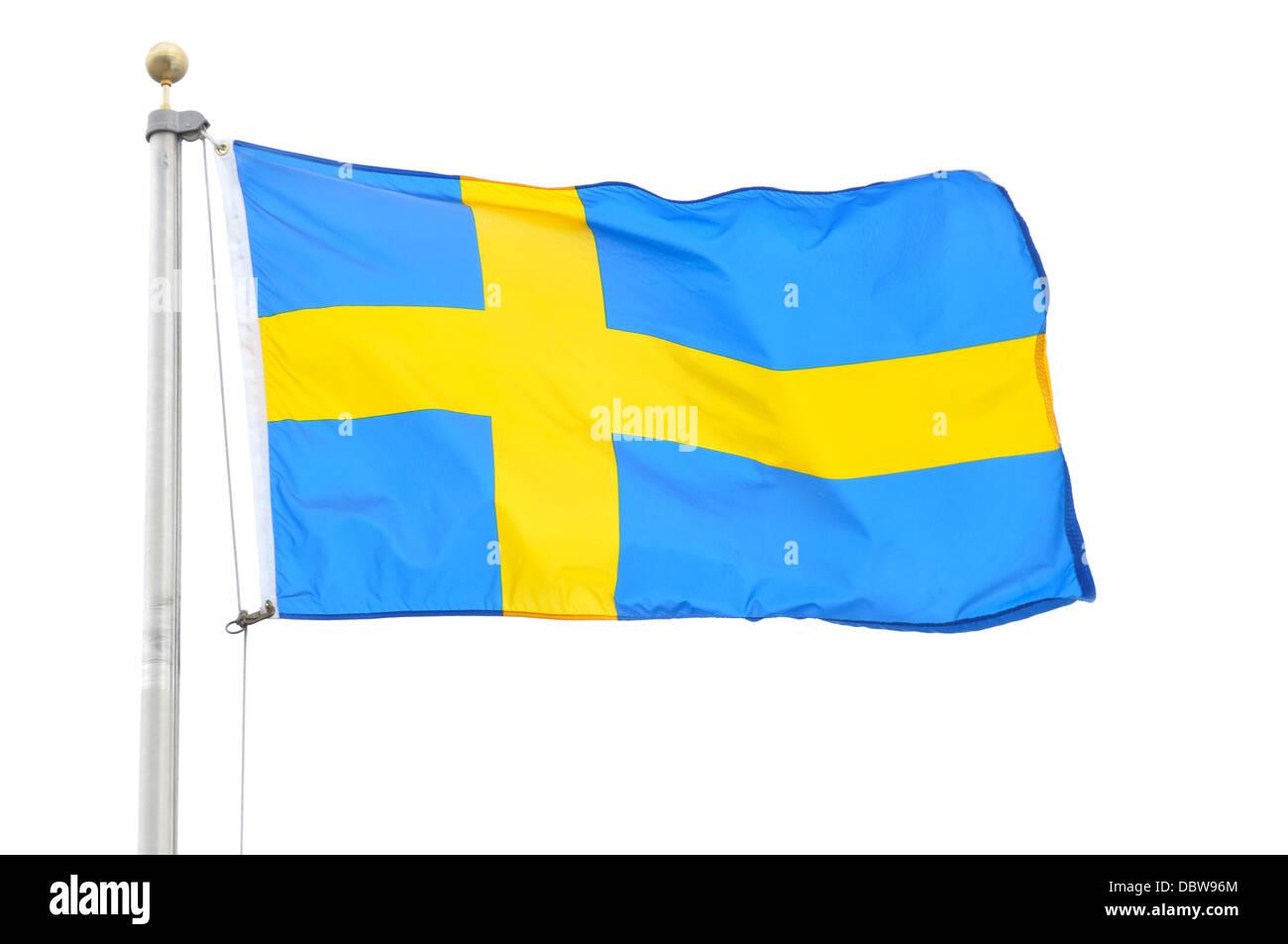 Swedish flag isolated on a white background - Stock Image