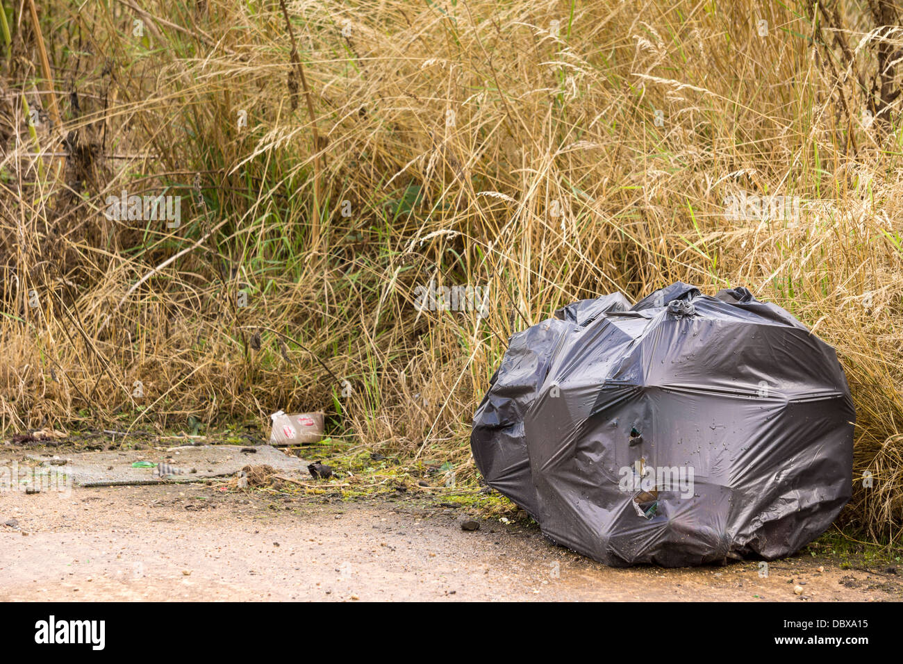 Bags of rubbish left in the countryside by an irresponsible Fly Tipper. - Stock Image