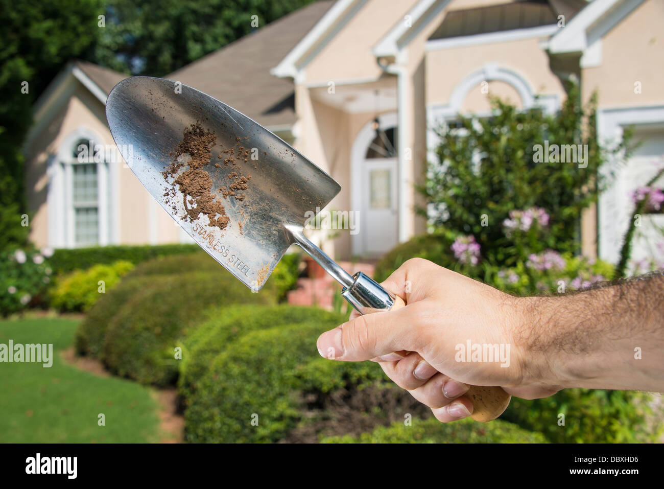 Man's hand holding dirty gardening spade in front of a home's front lawn. - Stock Image