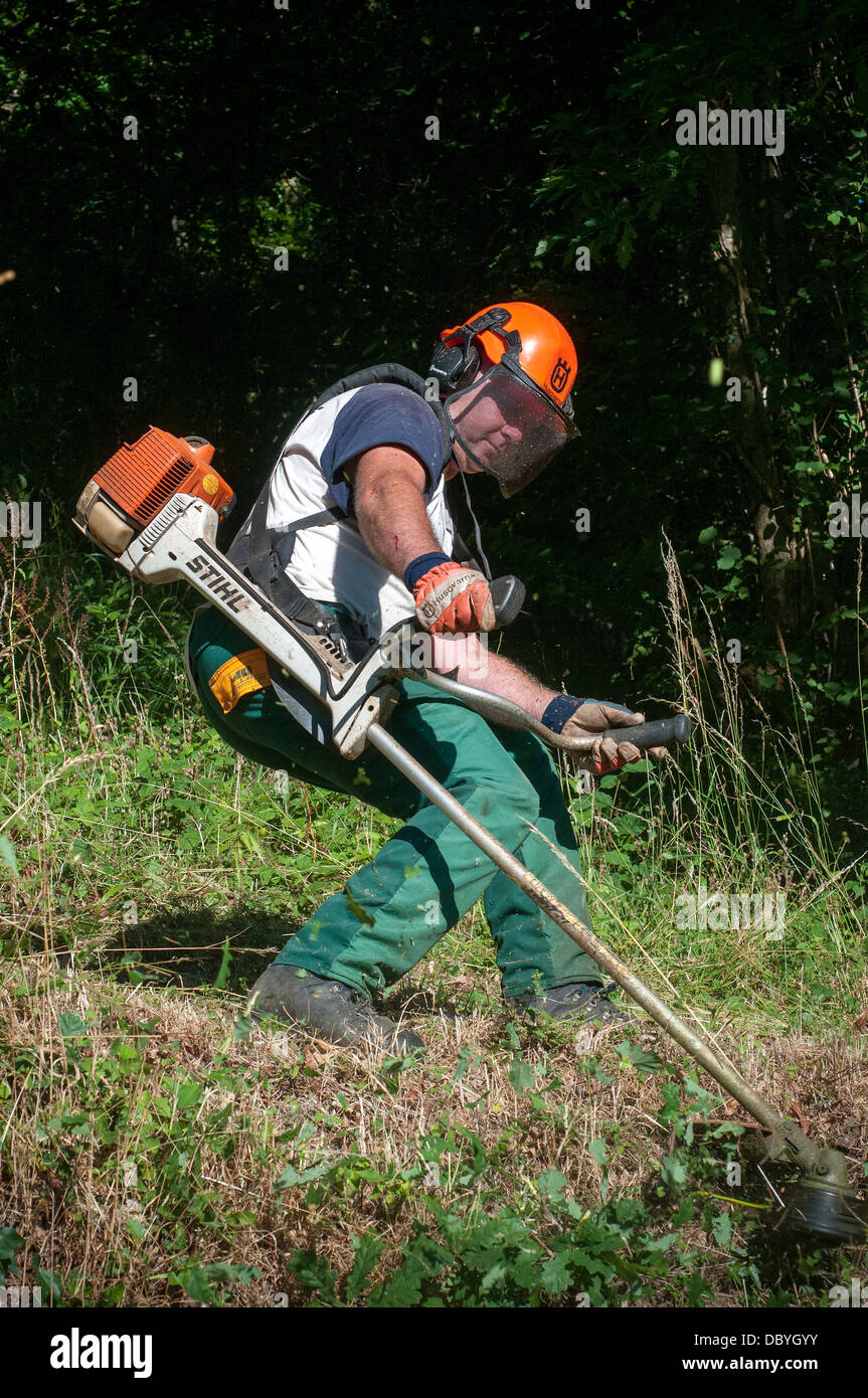 strimming,strimmer,stihl,safety equipment,farmer on tractor, united kingdom, tree, meadow, trail, grazing, tourist - Stock Image