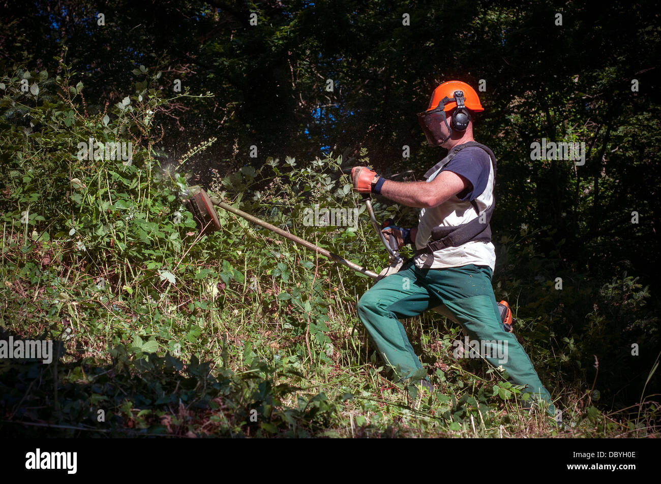 strimming,safety equipment,strimmer,strimmers,farmer, united kingdom, tree, meadow, trail, grazing, tourist destinati - Stock Image