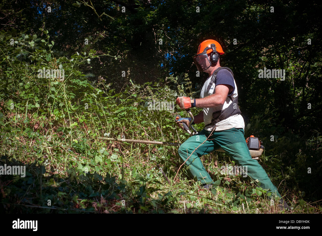 strimming,safety equipment,strimmer,strimmers,farmer on tractor, united kingdom, tree, meadow, trail, grazing, tourist - Stock Image