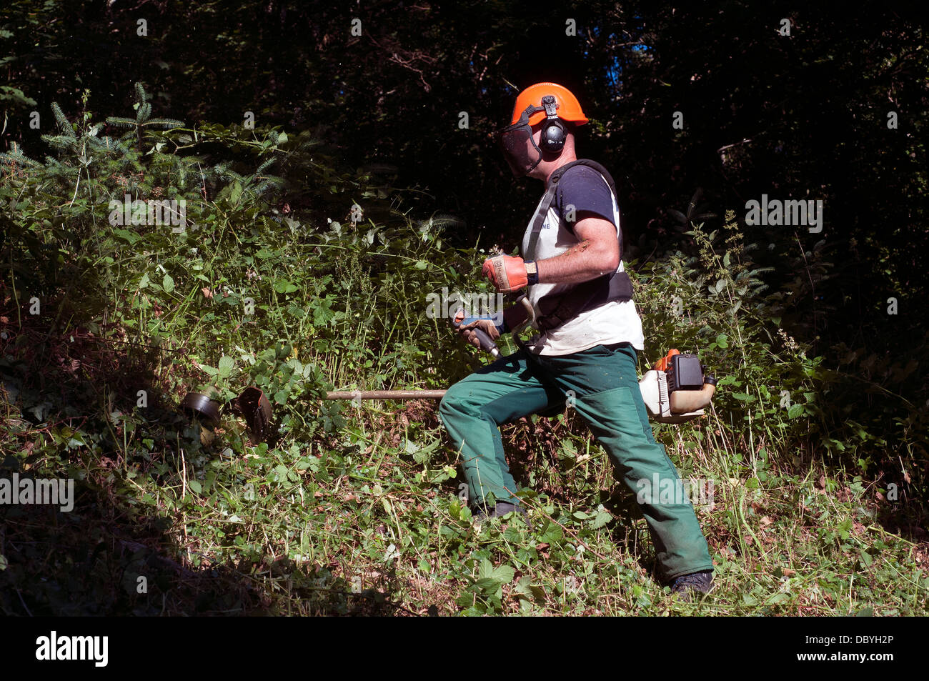 strimming,safety equipment,strimmer,strimmers, backyard, blue, close-up, color, cord, cutter, cutting, day, edger, - Stock Image