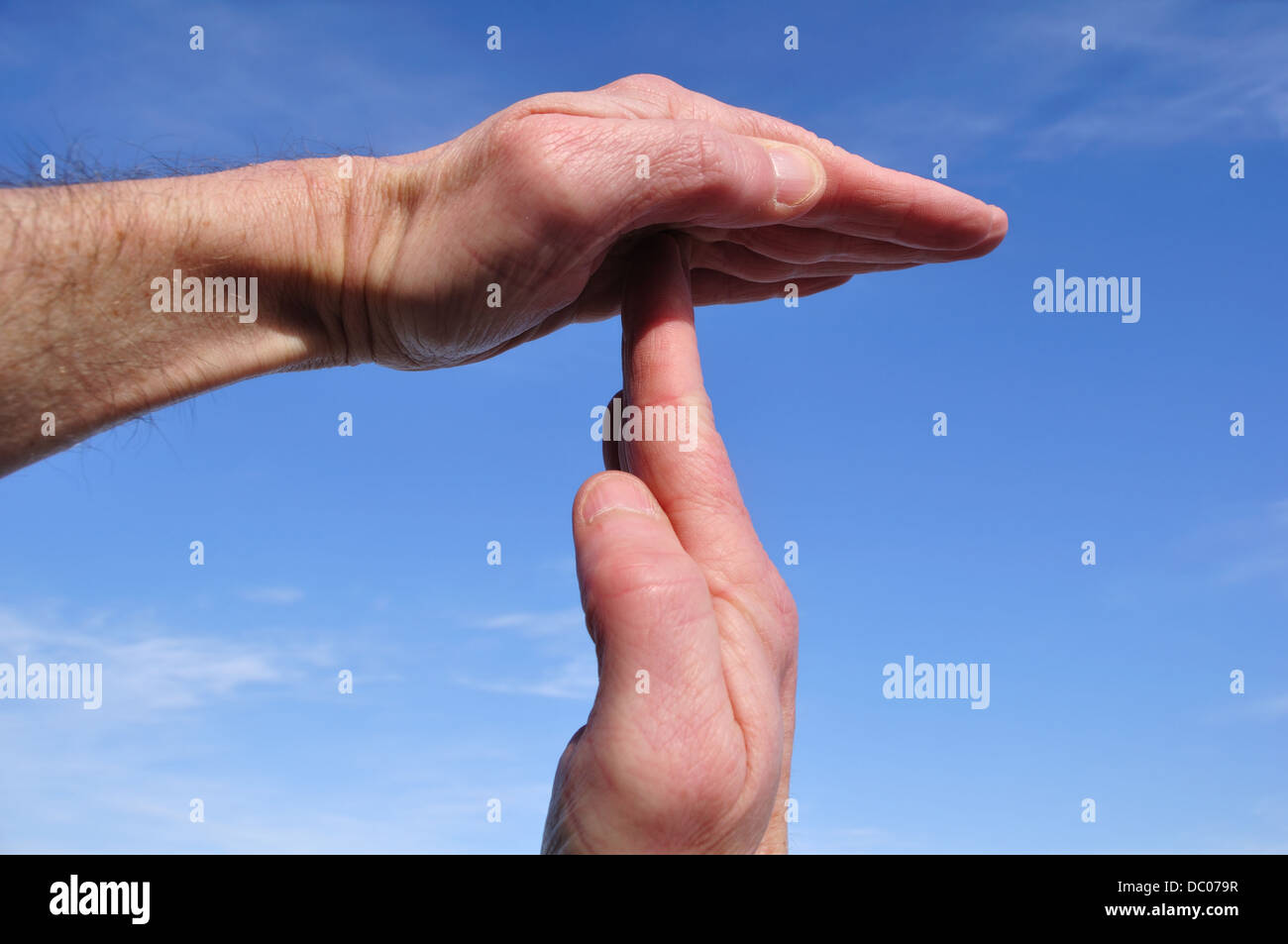 Time out signal / hand gesture - Stock Image