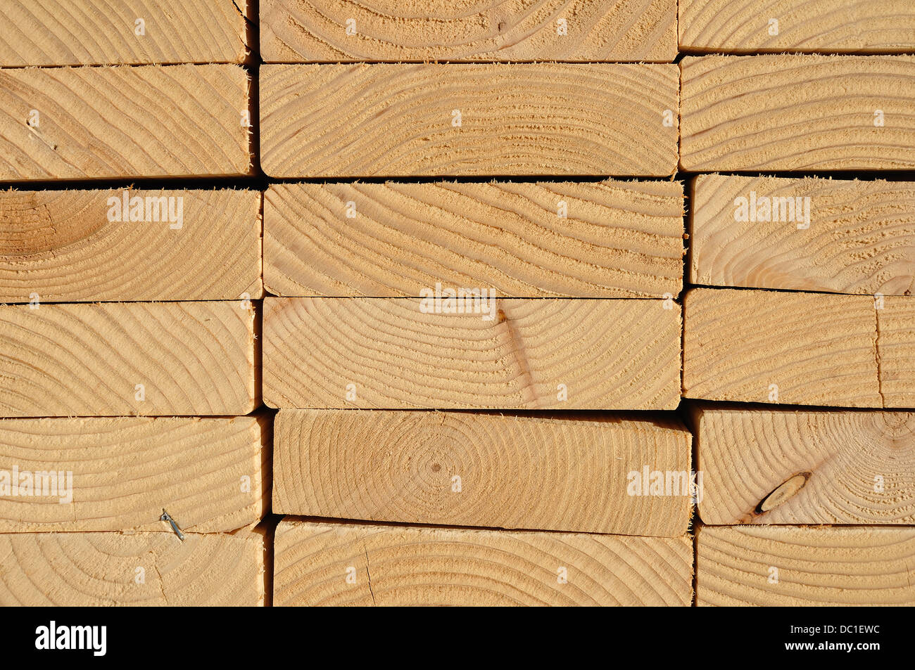 Close up of timber planks for construction - Stock Image