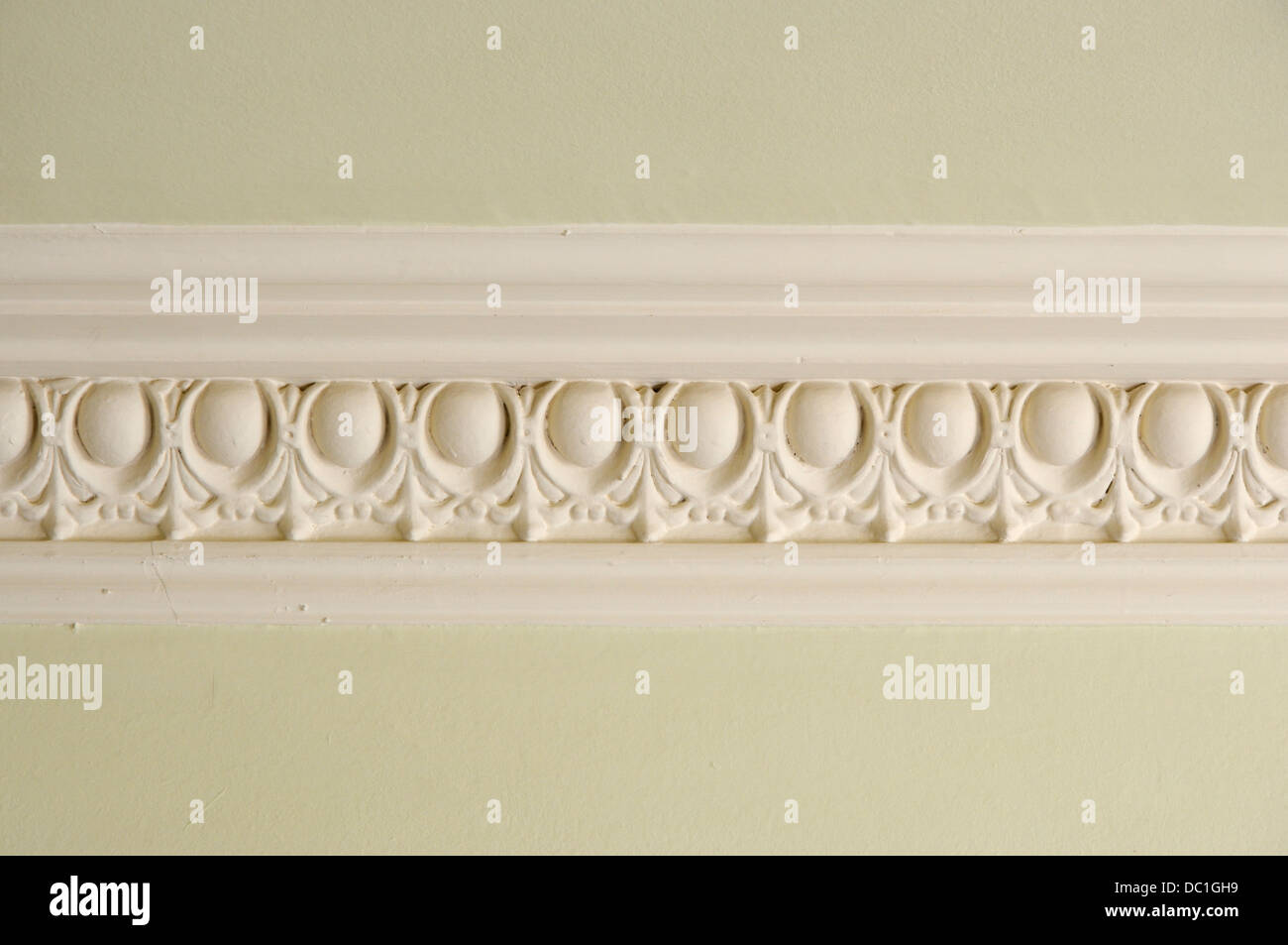 Egg and dart cornice in an early 20th century tenement flat in Edinburgh - Stock Image