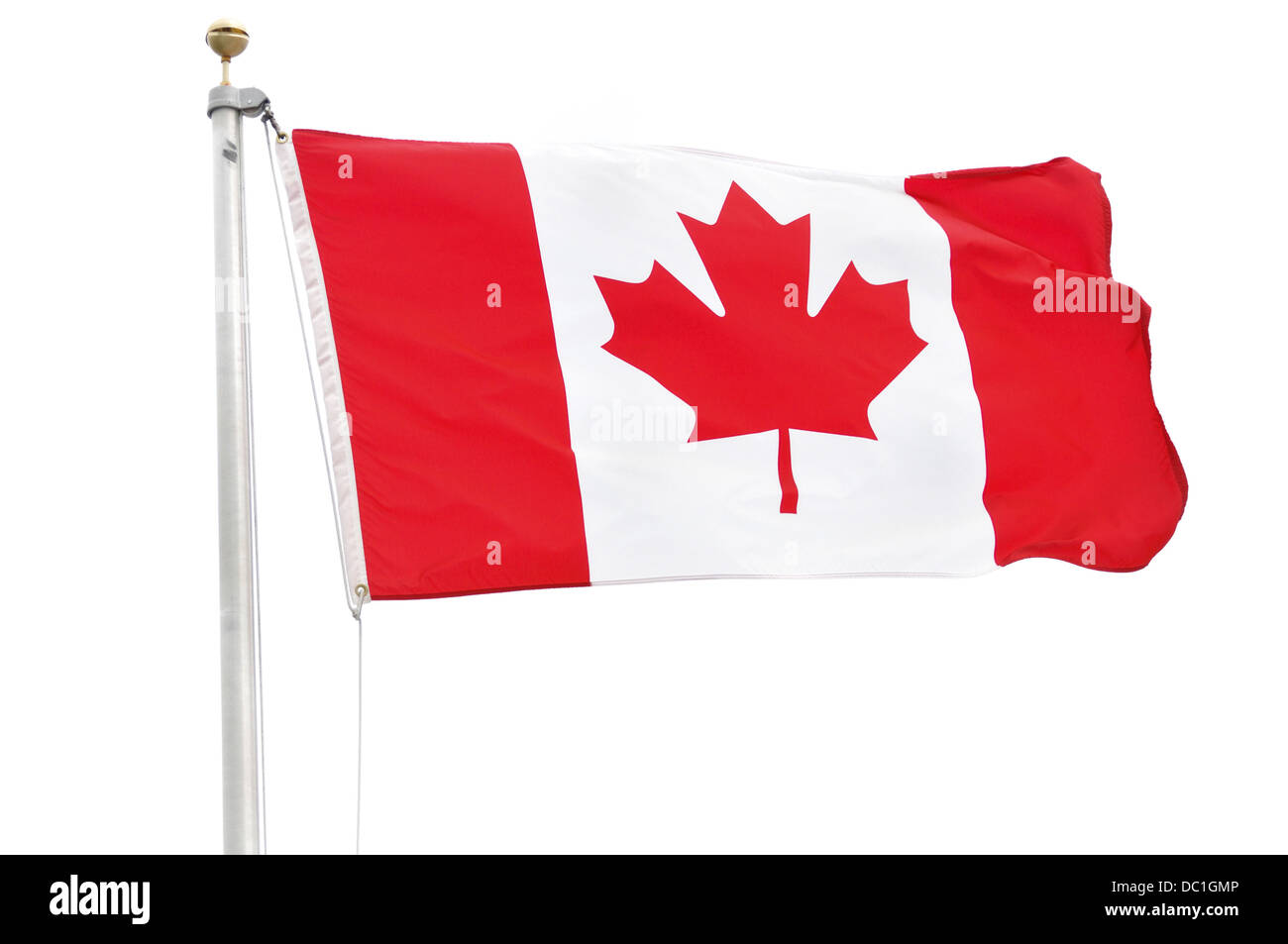Flag of Canada Isolated on a White Background Stock Photo