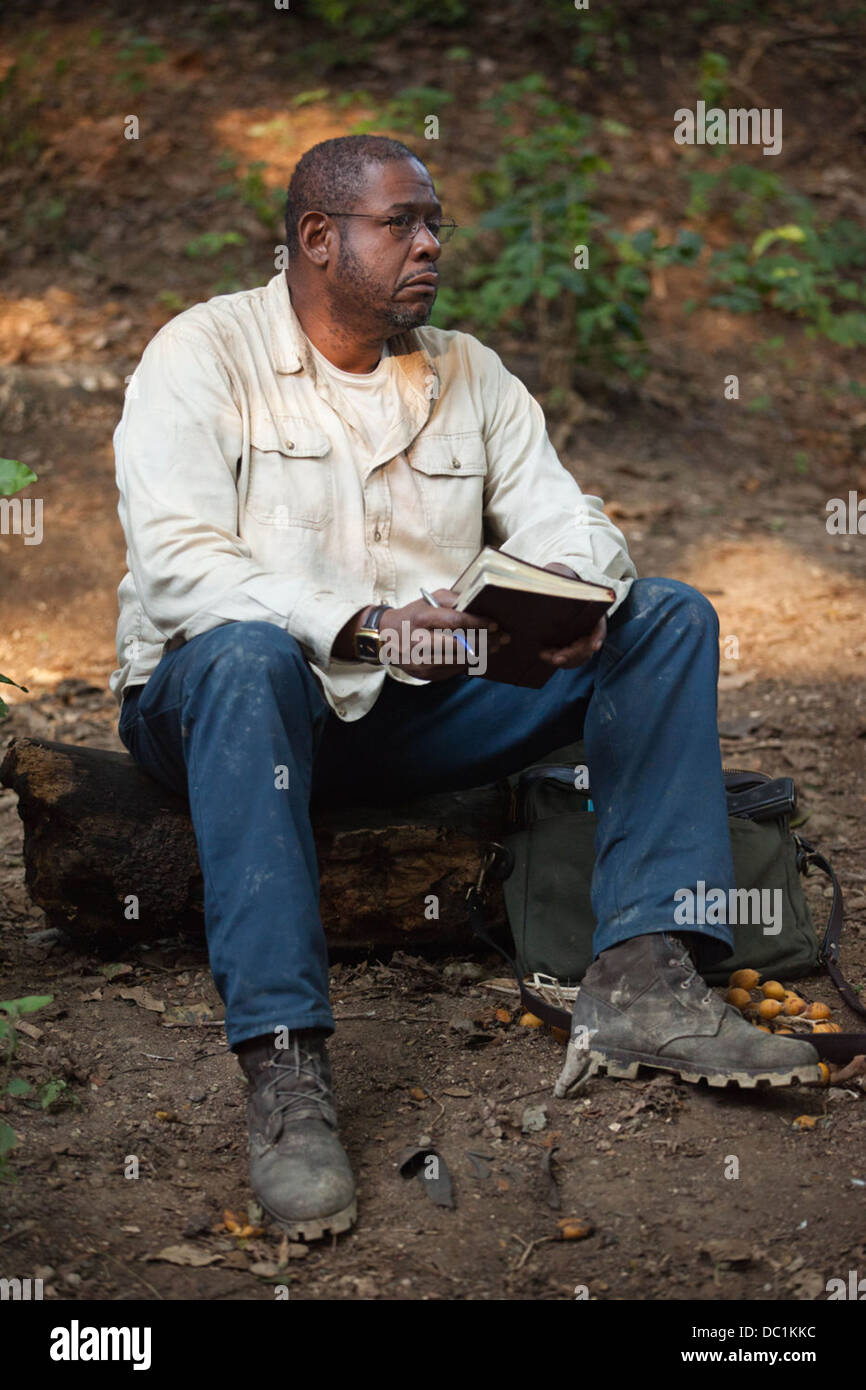 A DARK TRUTH (2012) FOREST WHITAKER DAMIAN LEE (DIR) 003 MOVIESTORE COLLECTION LTD - Stock Image