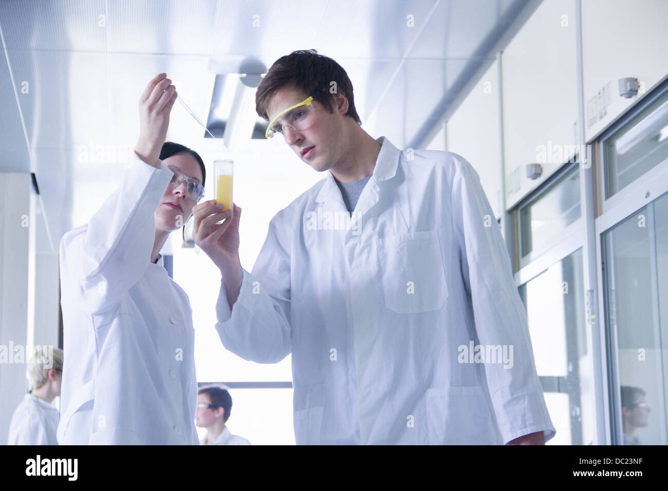 Chemistry students mixing chemicals in laboratory - Stock Image