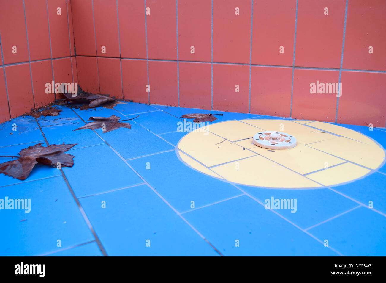 Empty Dry Off-season Swimming Pool Corner with Drain and Brown Leafs Stock Photo